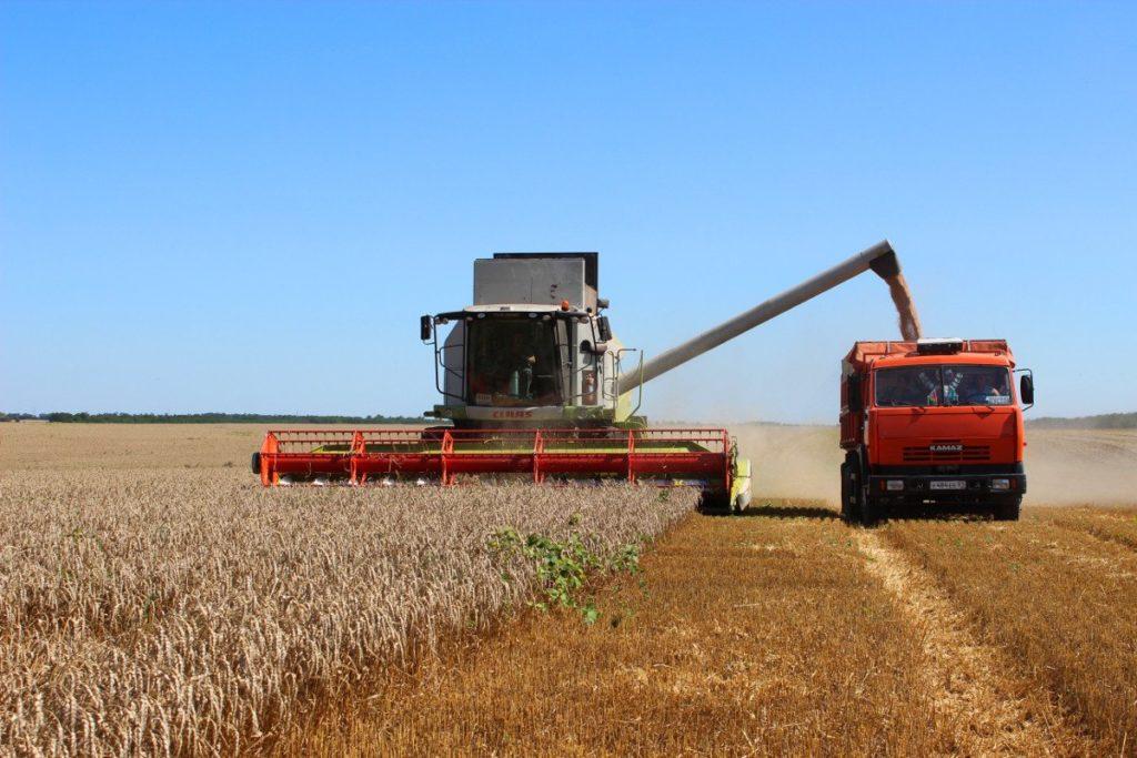 Камазы для уборки урожая